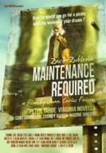 Maintenance required (C)
