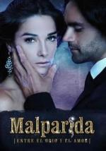 Malparida (Serie de TV)