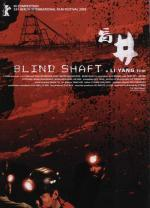 Blind Shaft
