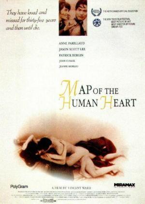 Mapa de un corazón humano