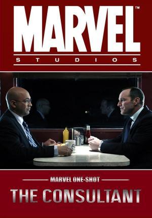 Marvel de un vistazo: El consultor (C)