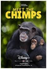 Meet the Chimps (Serie de TV)