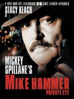 Mike Hammer, Private Eye (Serie de TV)