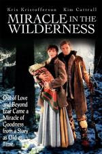 Miracle in the Wilderness (TV)
