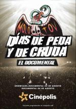 Molotov 20 años: Días de peda y de cruda