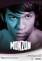 Monzón (TV Series)