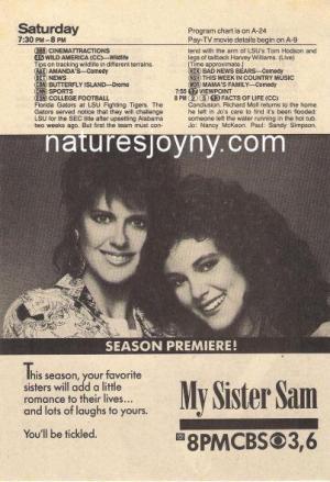 Mi hermana Sam (Serie de TV)