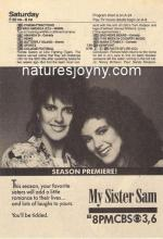 My Sister Sam (TV Series)