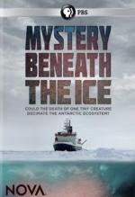 Mystery Beneath the Ice (TV)