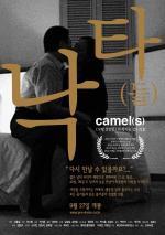 Camel(s')