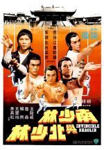 Shaolin invencible