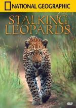 Leopardos al acecho (TV)