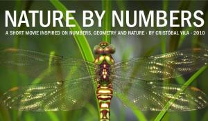 Nature by Numbers (C)