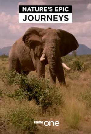 Nature's Epic Journeys (Miniserie de TV)