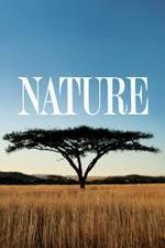 Nature (Serie de TV)