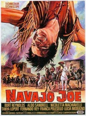Navajo's Land