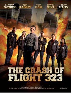 NTSB: The Crash of Flight 323 (TV) (TV)
