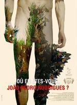 Where Do You Stand Now, João Pedro Rodrigues? (C)