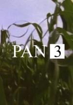 Pan 3 (S)