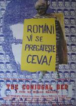 Patul conjugal (The Conjugal Bed)