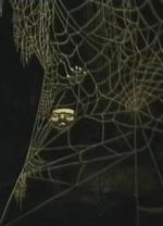 Pauk (La araña) (C)
