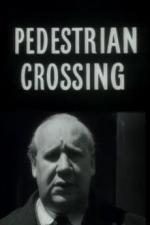 Pedestrian Crossing (S)