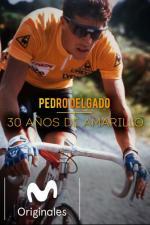 Pedro Delgado. 30 años de amarillo
