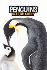Pingüinos (TV)