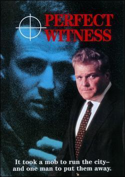 Perfect Witness (TV) (TV)