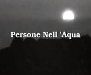 Persona Nell'Aqua (C)