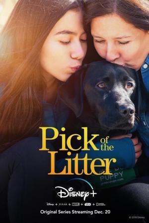 Pick of the Litter (TV Miniseries)
