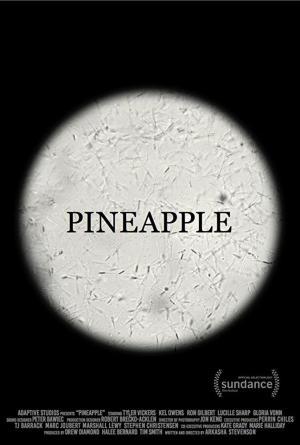 Pineapple (TV)