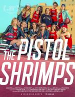 Pistol Shrimps