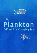 Plankton (C)
