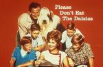 Please Don't Eat the Daisies (TV Series)