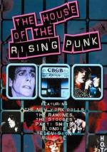 The House of the Rising Punk (TV)