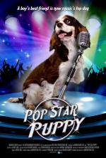 Pop Star Puppy