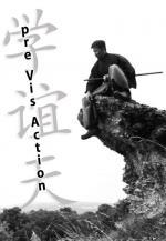 Pre Vis Action (S)
