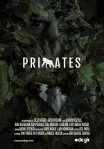 Primates (S)