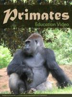 Primats (Primates)