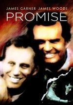 La promesa (TV)