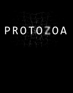 Protozoa (C)