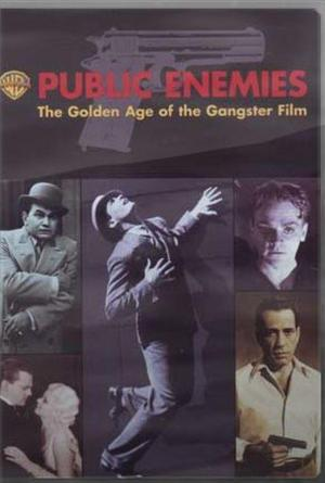Public Enemies: The Golden Age of the Gangster Film (TV)