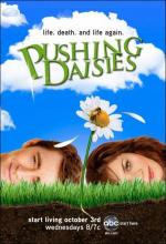 Pushing Daisies (TV Series)