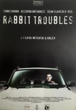 Rabbit Troubles (C)