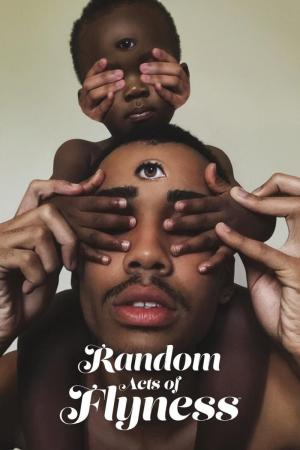 Random Acts of Flyness (Miniserie de TV)