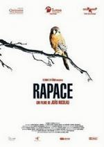 Rapace (C)