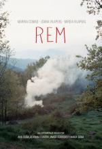 REM (C)