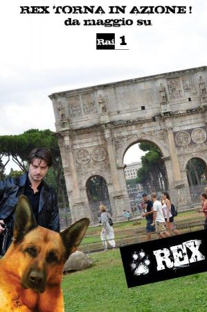 Rex (Serie de TV)