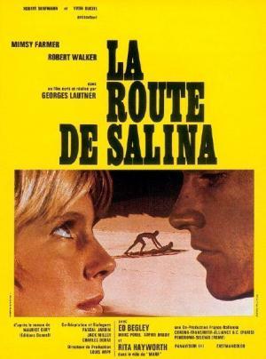 Road to Salina